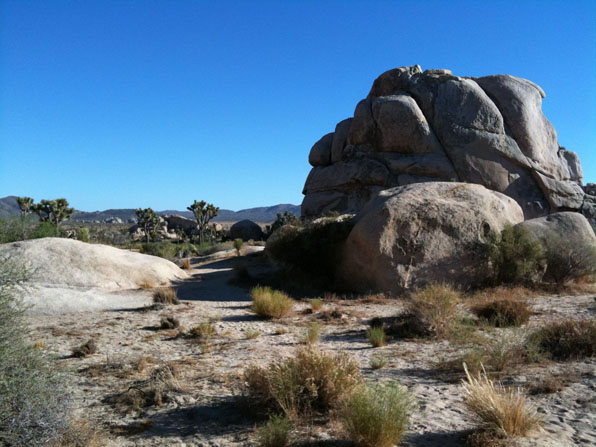 Joshua Tree National Park - Hidden Valley