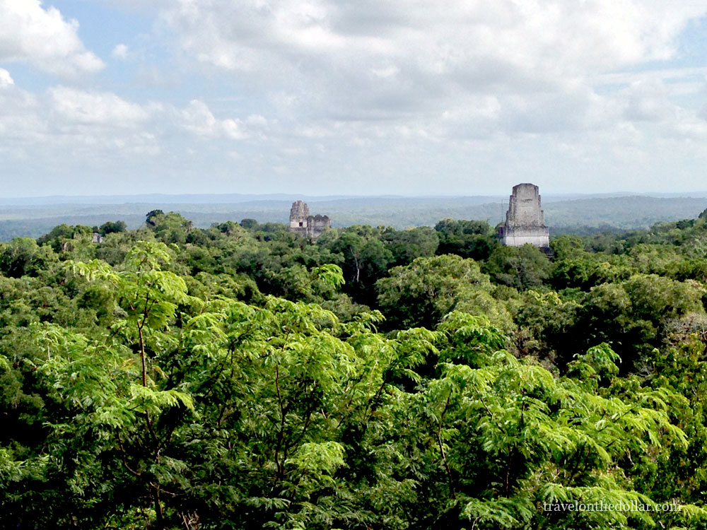 View from top of Temple IV