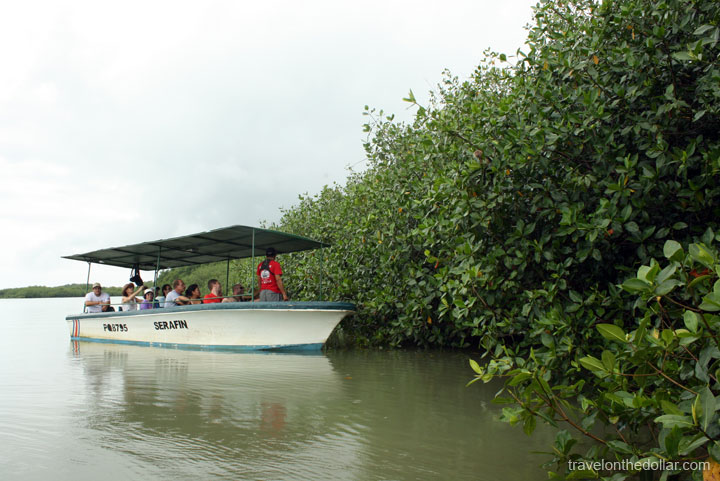 Tour boats doing the Mangrove tour at  Manuel Antonio Park