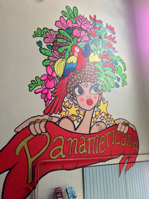 panamericana1