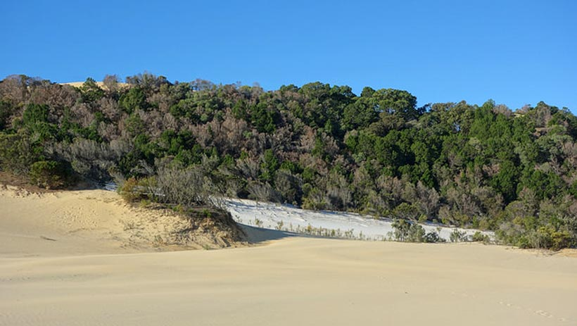 Great Sandy National Park of Kin Kin