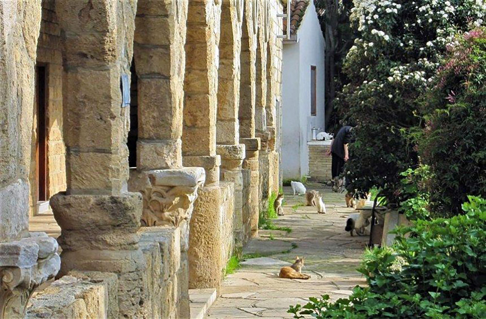 Holy Monastery of St Nicholas of the Cats
