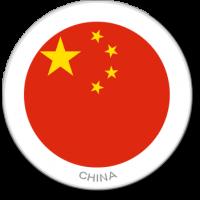 Flag Sticker - China