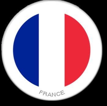 Flag Sticker - France